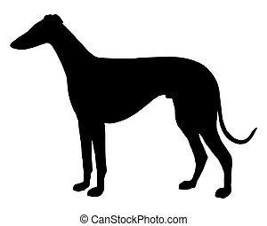 The black silhouette of a shorthaired Sighthound