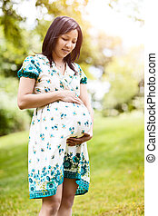 Pregnant Asian woman - A shot of a beautiful pregnant Asian...