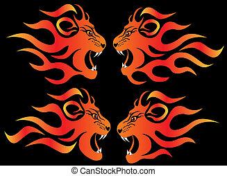 set illustration infuriated lion in fire on black