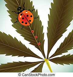 ladybugs on cannabis leaf, abstract vector art illustration;...