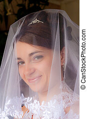 Portrait of the beautiful bride under a veil. Soft and...