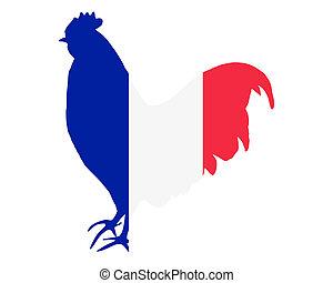雄ん鶏, フランス語