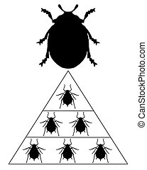 Ladybird diet pyramid