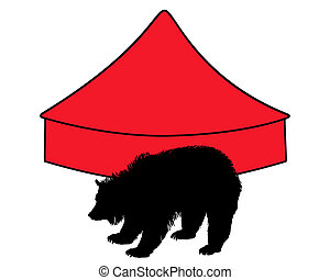 Grizzly bear in circus