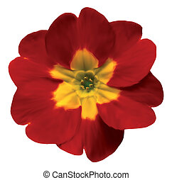 Design Elements: Red flower Vector - Isolated Design...