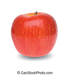 Red Apple isolated on white background. Vector