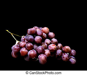Grapes isolated on black background. Vector