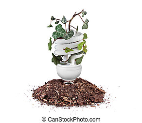 Eco idea - A green ivy plant grows within an energy...