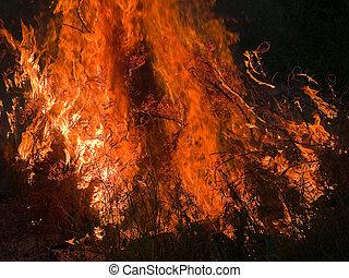 brûlé, flamme, brûler, enfer