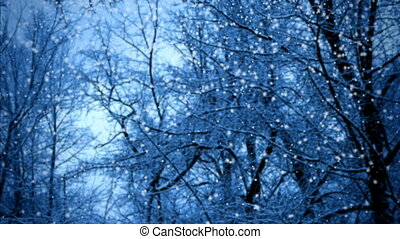 Snowfall in twilight forest seamless loop