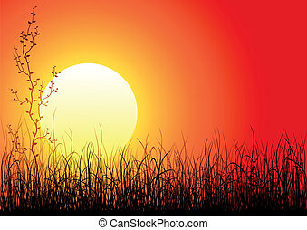 Magic sunset with dark grass and single tree