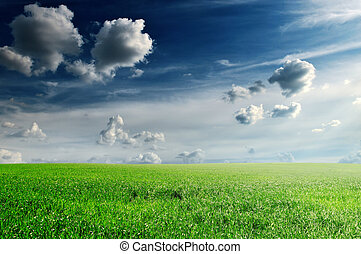 spring field - white beautiful clouds and spring field...