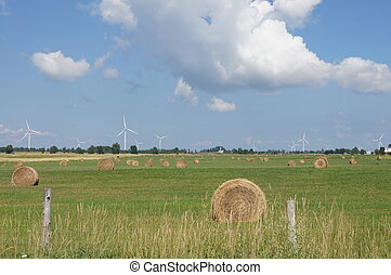 Hay Bales and Wind Turbines - A field full of round freshly...