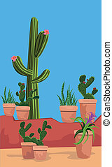 Cactus - Illustration of cactus plants in the pots