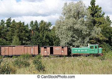 Freight train - The locomotive and freight cars on a...