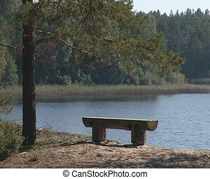 Lonely wooden bench near lake