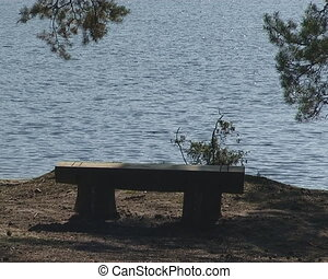 Lonely wooden bench near beautifull
