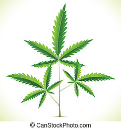 Marijuana Leaf - illustration of marijuana leaf on abstract...