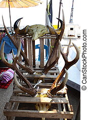 Illegal trading of beast organ in market.