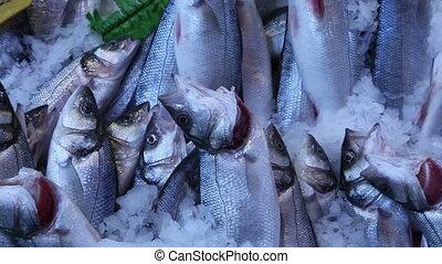 fish bazaar 2