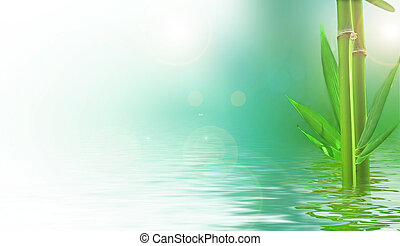 bamboos reflected in the water - the natural background