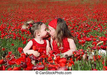 little girls sitting in summer poppy field