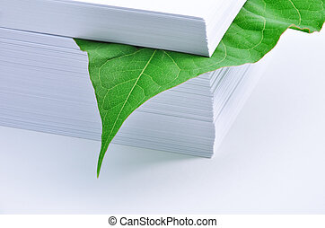Leaf in stack of paper