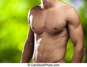 perfect torso of a young man at park