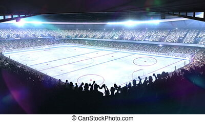 Hockey stadium. Sports event.