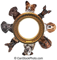 a group of dog portraits around a round golden picture frame