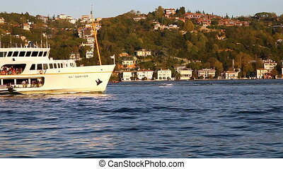 steamboat and yatch - passenger ships and yachts in the...