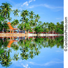 Tropical hotel on the background of coconut trees in Thailand