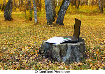 Laptop on the stump - Laptop and notebook on the stump at...