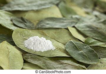 cocaína, pó, (substituted, flour), secado,...