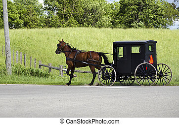 Amish mennonite people riding their buggy on modern road