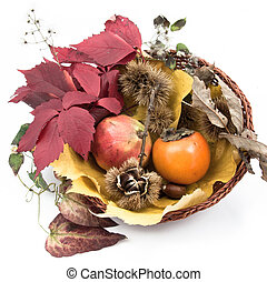 Autumnal fruit composition in a basket on white - Autumnal...