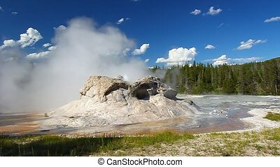 Grotto Geyser - Yellowstone Nationa - Small spurts of water...