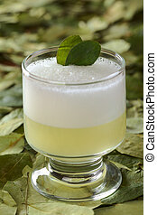 Peruvian cocktail called Coca Sour made of Pisco (Peruvian grape schnaps), coca leaves, lime juice, syrup and egg white (Selective Focus, Focus on the first coca leaf in the cocktail)