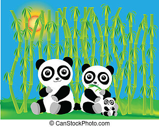 panda with bamboo - pandas in bamboo forest