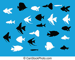 Set of aquarium fish silhouettes - vector