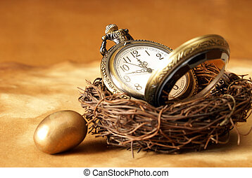 Time - A conceptual image of a pocket watch inside a birds...