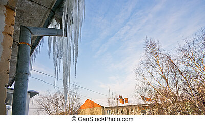 Icicles  - Thick icicles frozen on a water pipe on a roof