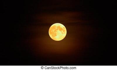 Full moon in the mist on dark night