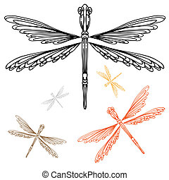 Detailed Dragonfly