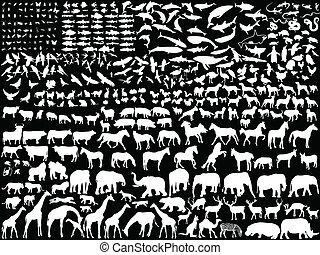 White animals - White different animals - vector