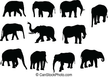 elephants silhouette - Collection of elephants silhouette -...