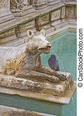 she wolf statue of siena fountain