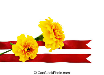 Marigold flower with red ribbon on a white background