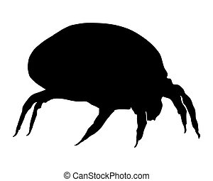 The illustration of a house dust mite