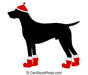 German Shorthaired Pointer with red christmas cap and boots
